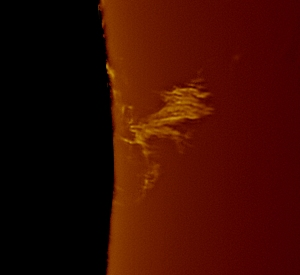 "Image of ""Witches Broom"" prominence in H-alpha, taken by Mick Jenkins"