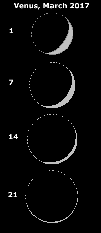 Sequence of Venus phases